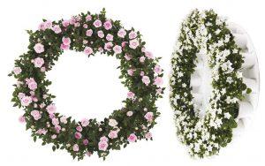Despedir con flores ecológicas