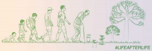 Funerales ecológicos