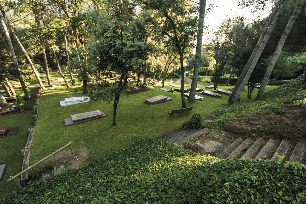 bosque calma ecofunerales