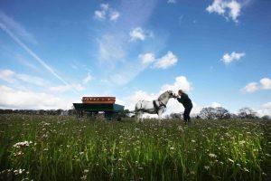 entierros ecológicos ecofunerales