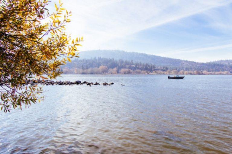 cenizas mar ecofunerales